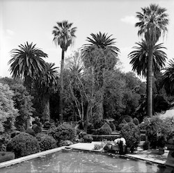 View of the garden of Herdeiros Passanha's house
